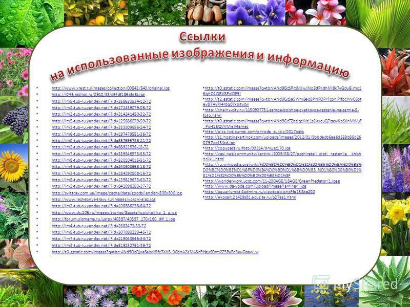 http://www.xrest.ru/images/collection/00542/540/original.jpg http://i046.radikal.ru/0910/33/c54df186afe8t.jpg http://im8-tub-ru.yandex.net/i?id=358633534-12-72 http://im2-tub-ru.yandex.net/i?id=172439079-06-72 http://im2-tub-ru.yandex.net/i?id=314241