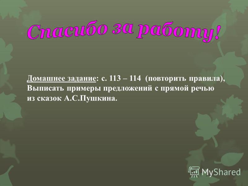 Домашнее задание : с. 113 – 114 ( повторить правила ), Выписать примеры предложений с прямой речью из сказок А. С. Пушкина.