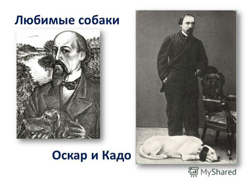 Оскар и Кадо Любимые собаки