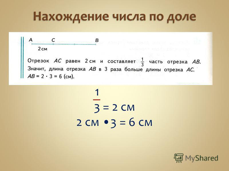 1 3 = 2 см 2 см 3 = 6 см