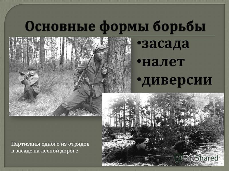 засада налет диверсии Партизаны одного из отрядов в засаде на лесной дороге