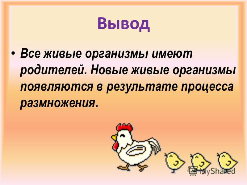 Вывод Все живые организмы имеют родителей. Новые живые организмы появляются в результате процесса размножения.