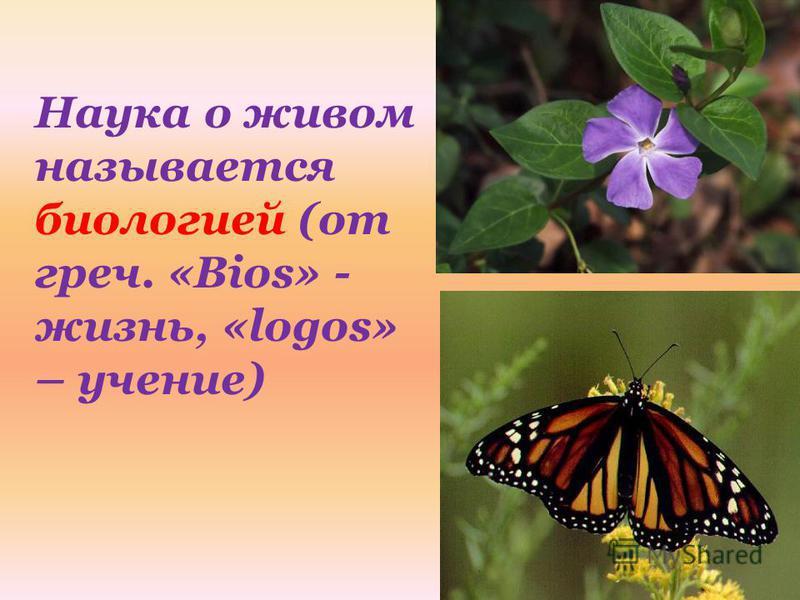 Наука о живом называется биологией (от греч. «Bios» - жизнь, «logos» – учение)