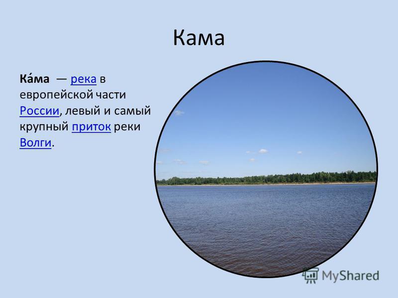 Кама Ка́ма река в европейской части России, левый и самый крупный приток реки Волги.река Россииприток Волги