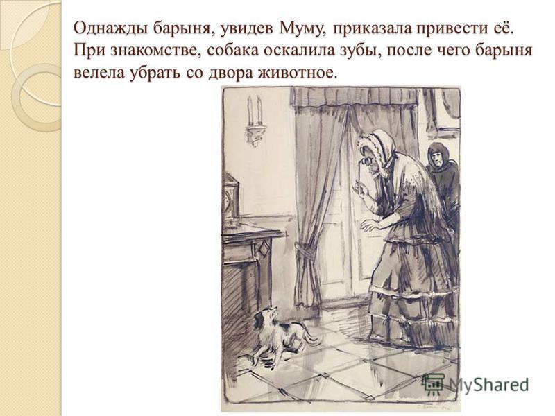 Однажды барыня, увидев Муму, приказала привести её. При знакомстве, собака оскалила зубы, после чего барыня велела убрать со двора животное.