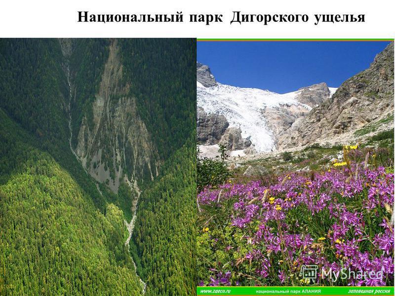 Национальный парк Дигорского ущелья