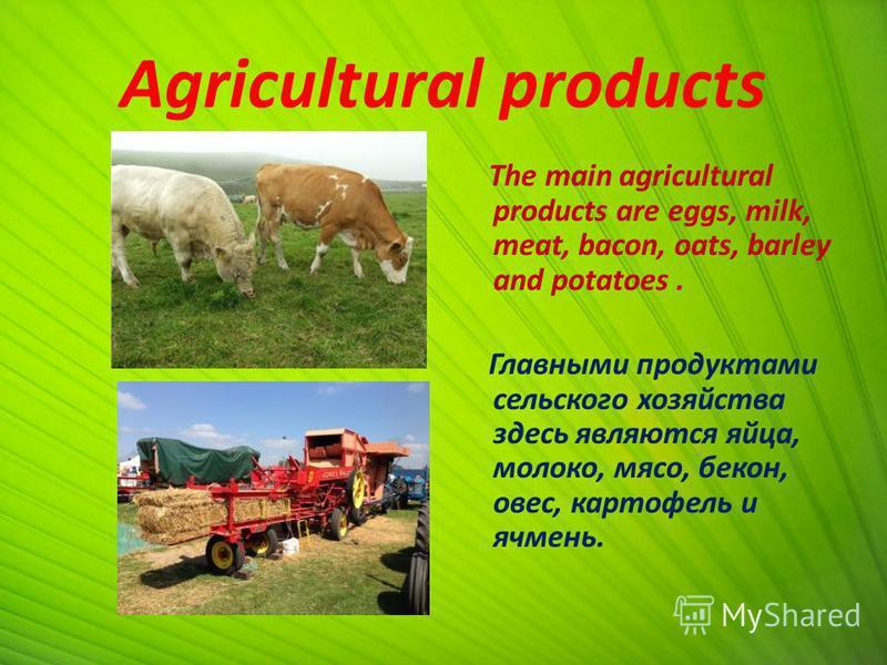 Agricultural products The main agricultural products are eggs, milk, meat, bacon, oats, barley and potatoes. Главными продуктами сельского хозяйства здесь являются яйца, молоко, мясо, бекон, овес, картофель и ячмень.