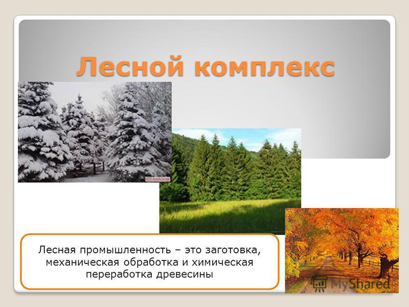 Лесной комплекс Лесная промышленность – это заготовка, механическая обработка и химическая переработка древесины