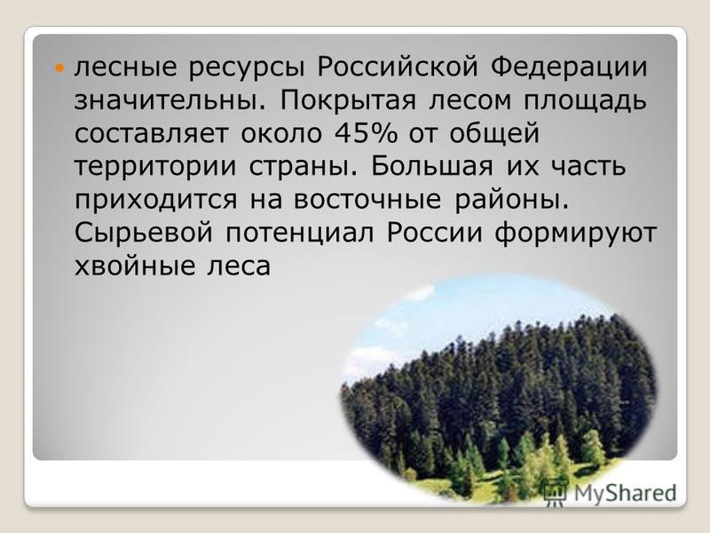 лесные ресурсы Российской Федерации значительны. Покрытая лесом площадь составляет около 45% от общей территории страны. Большая их часть приходится на восточные районы. Сырьевой потенциал России формируют хвойные леса