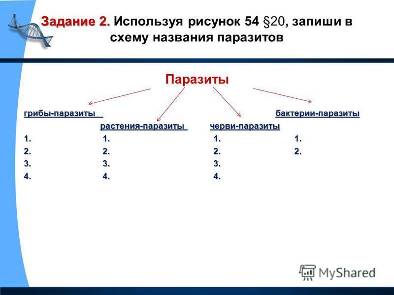 Задание 2. Задание 2. Используя рисунок 54 §20, запиши в схему названия паразитов Паразиты грибы-паразиты бактерии-паразиты растения-паразиты черви-паразиты растения-паразиты черви-паразиты 1. 1. 1. 1. 2. 2. 2. 2. 3. 3. 3. 4. 4. 4.