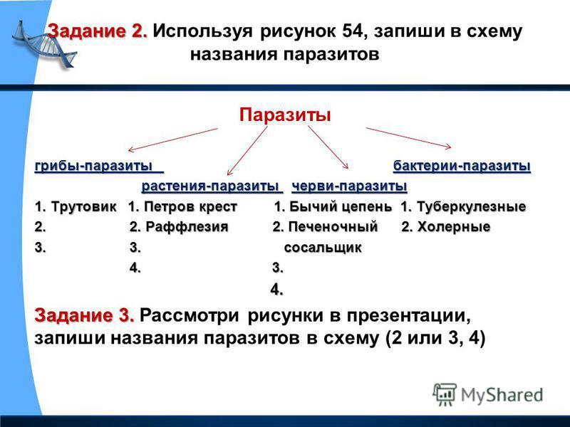 Задание 2. Задание 2. Используя рисунок 54, запиши в схему названия паразитов Паразиты грибы-паразиты бактерии-паразиты растения-паразиты черви-паразиты растения-паразиты черви-паразиты 1. Трутовик 1. Петров крест 1. Бычий цепень 1. Туберкулезные 2.