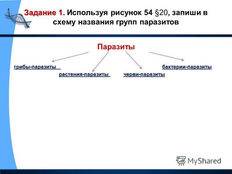 Задание 1. Задание 1. Используя рисунок 54 §20, запиши в схему названия групп паразитов Паразиты грибы-паразиты бактерии-паразиты растения-паразиты черви-паразиты растения-паразиты черви-паразиты