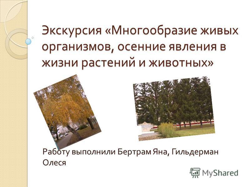Экскурсия « Многообразие живых организмов, осенние явления в жизни растений и животных » Работу выполнили Бертрам Яна, Гильдерман Олеся