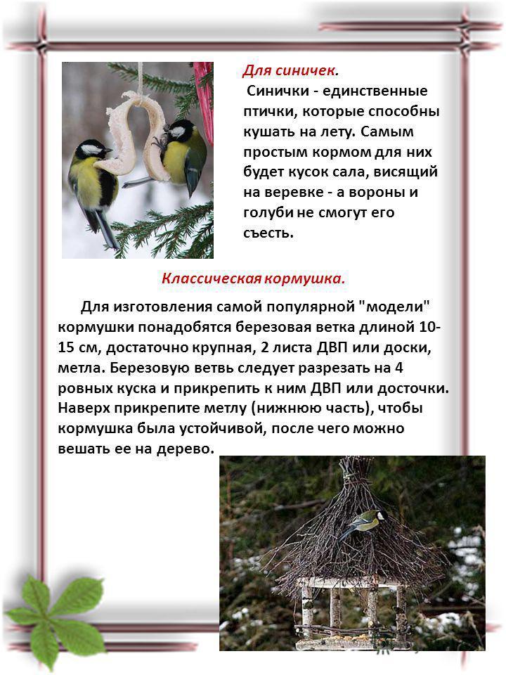 Для синичек. Синички - единственные птички, которые способны кушать на лету. Самым простым кормом для них будет кусок сала, висящий на веревке - а вороны и голуби не смогут его съесть. Классическая кормушка. Для изготовления самой популярной