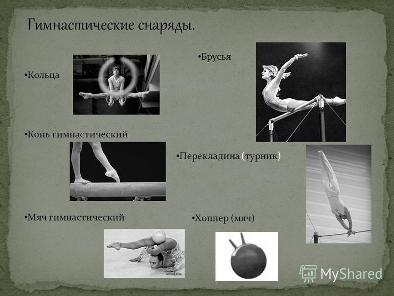 Гимнастические снаряды. Кольца Конь гимнастический Мяч гимнастический Брусья Перекладина (турник) Хоппер (мяч)