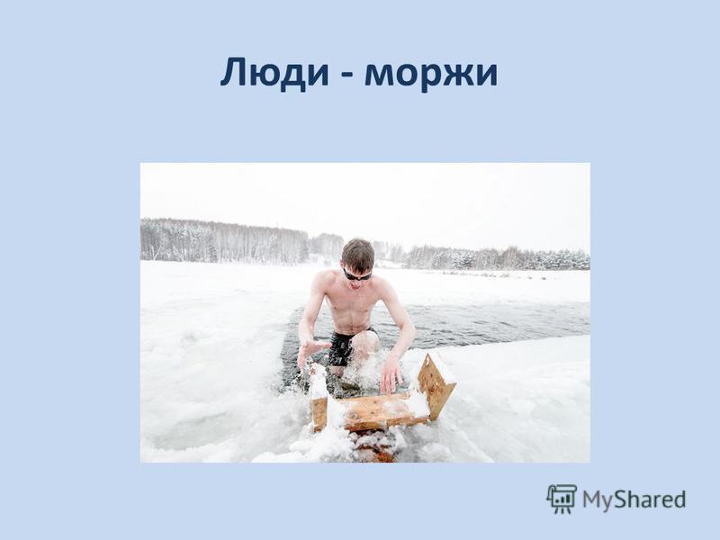 Люди - моржи