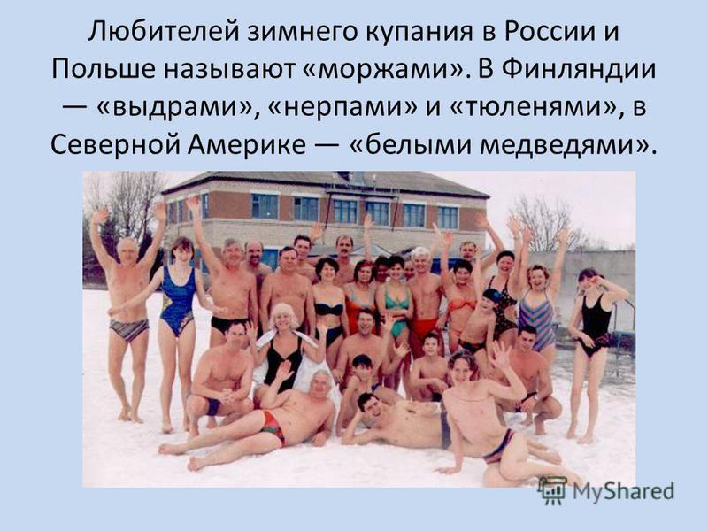 Любителей зимнего купания в России и Польше называют «моржами». В Финляндии «выдрами», «нерпами» и «тюленями», в Северной Америке «белыми медведями».
