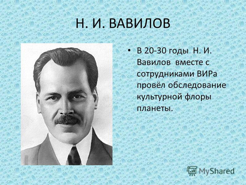 Н. И. ВАВИЛОВ В 20-30 годы Н. И. Вавилов вместе с сотрудниками ВИРа провёл обследование культурной флоры планеты.