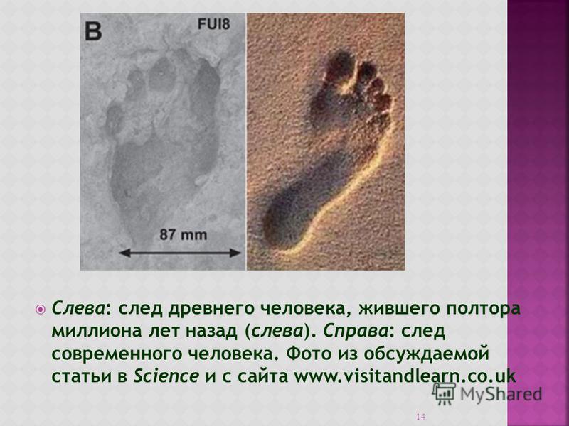 Слева: след древнего человека, жившего полтора миллиона лет назад (слева). Справа: след современного человека. Фото из обсуждаемой статьи в Science и с сайта www.visitandlearn.co.uk 14