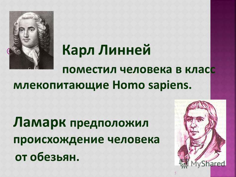 Карл Линней поместил человека в класс млекопитающие Ноmo sapiens. Ламарк предположил происхождение человека от обезьян. 5