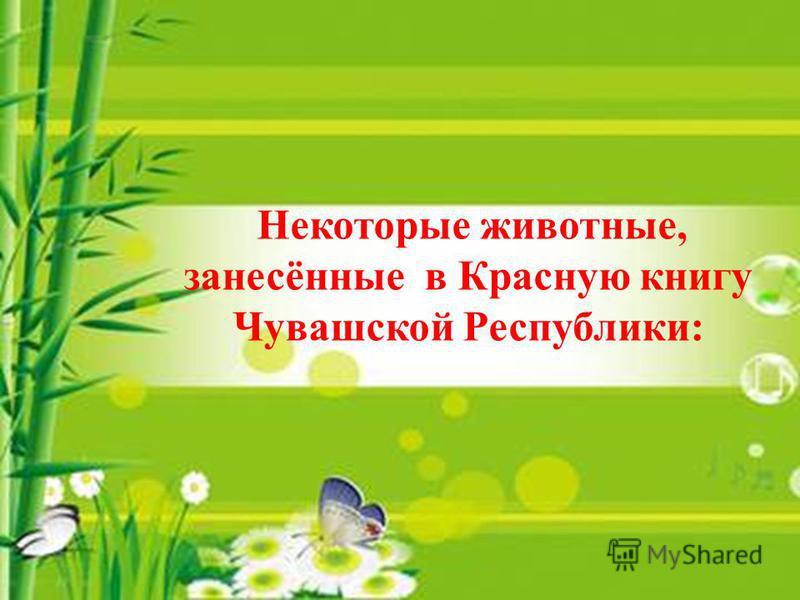 Некоторые животные, занесённые в Красную книгу Чувашской Республики: