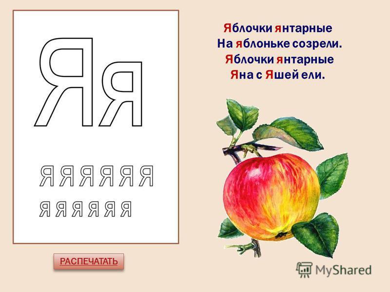 РАСПЕЧАТАТЬ Яблочки янтарные На яблоньке созрели. Яблочки янтарные Яна с Яшей ели.