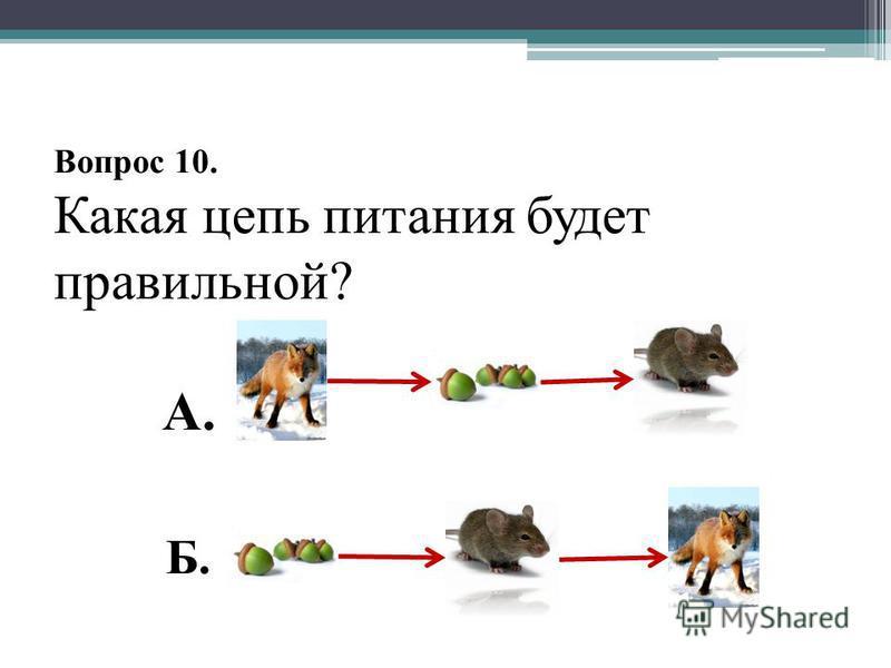 Вопрос 10. Какая цепь питания будет правильной? А. Б.