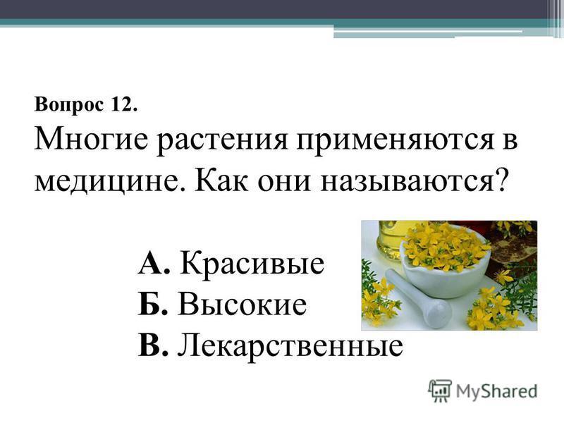 Вопрос 12. Многие растения применяются в медицине. Как они называются? А. Красивые Б. Высокие В. Лекарственные