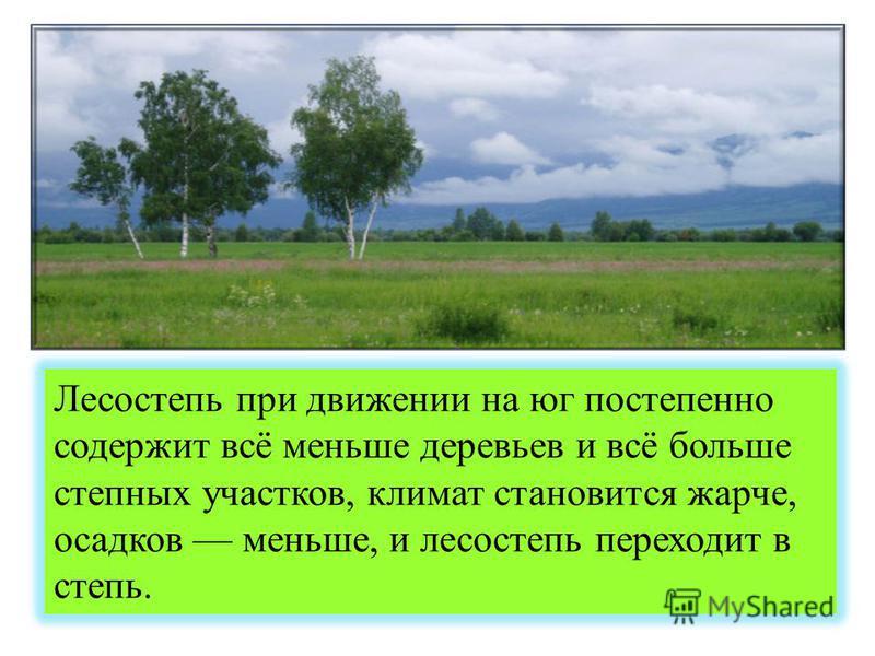 Лесостепь при движении на юг постепенно содержит всё меньше деревьев и всё больше степных участков, климат становится жарче, осадков меньше, и лесостепь переходит в степь.