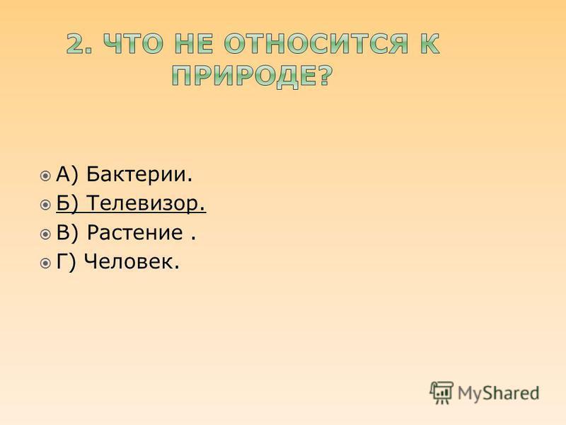 А) Бактерии. Б) Телевизор. В) Растение. Г) Человек.