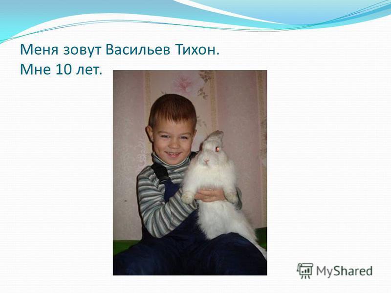 Меня зовут Васильев Тихон. Мне 10 лет.