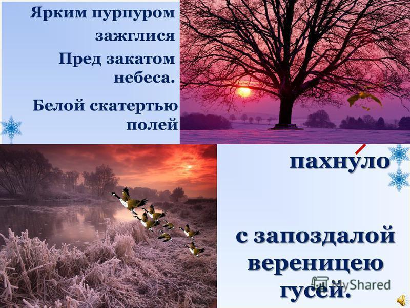 пахнуло Белой скатертью полей Ярким пурпуром зажглися Пред закатом небеса. с запоздалой вереницею гусей.