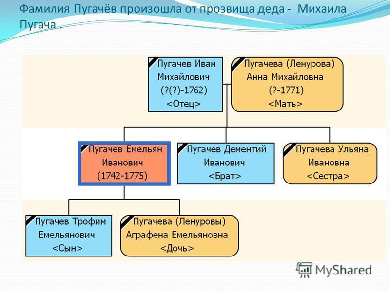 Фамилия Пугачёв произошла от прозвища деда - Михаила Пугача.