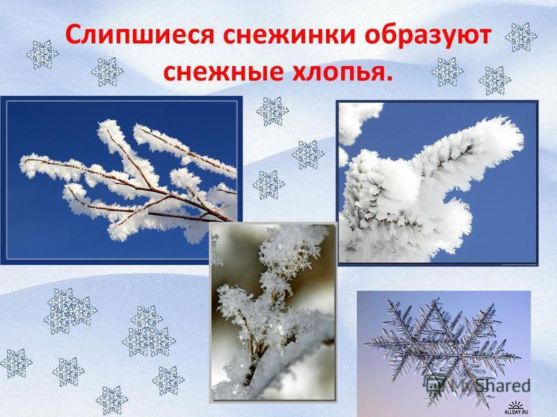 Слипшиеся снежинки образуют снежные хлопья.