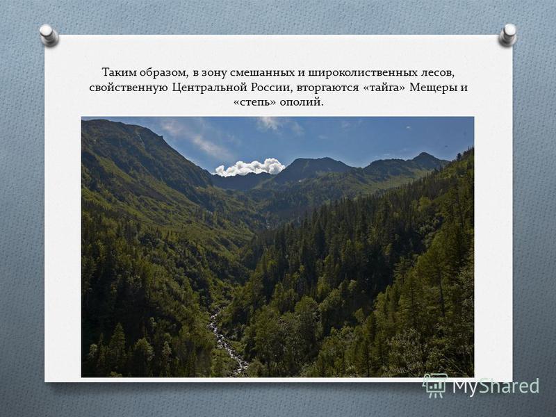 Таким образом, в зону смешанных и широколиственных лесов, свойственную Центральной России, вторгаются «тайга» Мещеры и «степь» ополий.