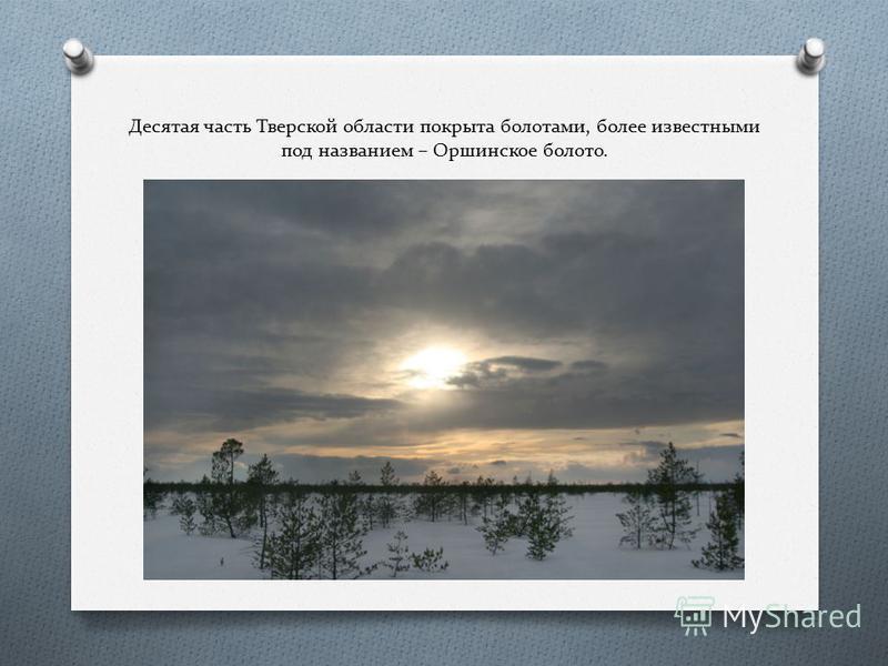 Десятая часть Тверской области покрыта болотами, более известными под названием – Оршинское болото.