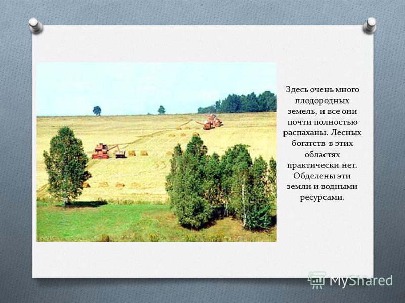 Здесь очень много плодородных земель, и все они почти полностью распаханы. Лесных богатств в этих областях практически нет. Обделены эти земли и водными ресурсами.