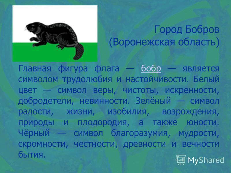Город Бобров (Воронежская область) Главная фигура флага бобр является символом трудолюбия и настойчивости. Белый цвет символ веры, чистоты, искренности, добродетели, невинности. Зелёный символ радости, жизни, изобилия, возрождения, природы и плодород