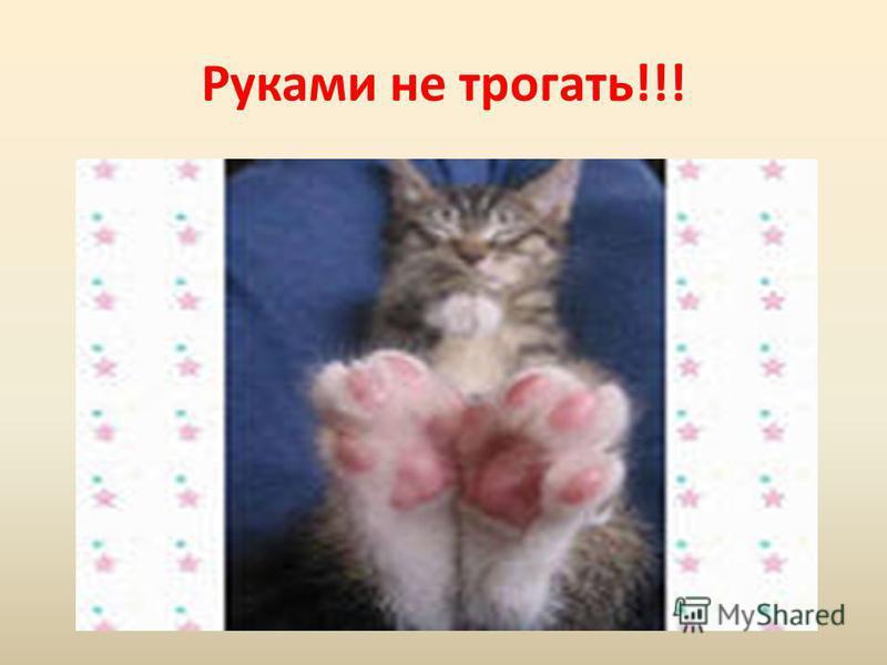 Руками не трогать!!!