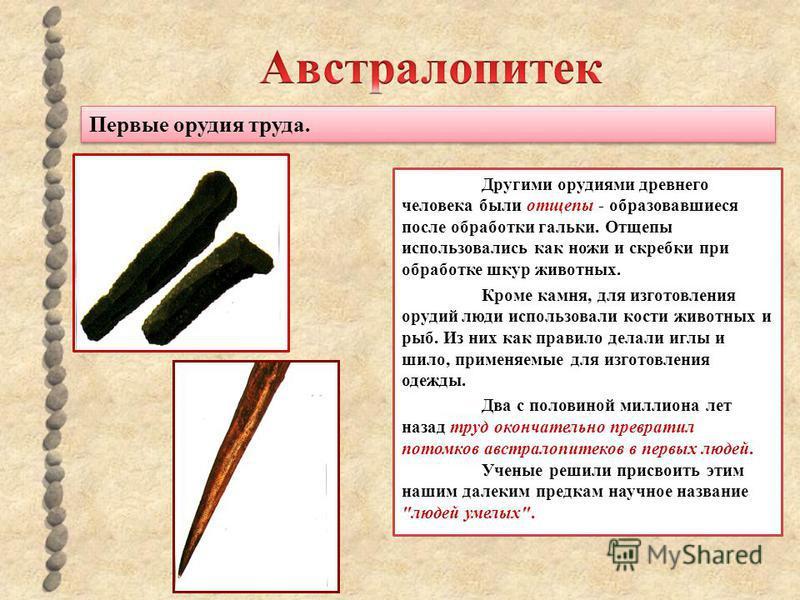 Первые орудия труда. Другими орудиями древнего человека были отщепы - образовавшиеся после обработки гальки. Отщепы использовались как ножи и скребки при обработке шкур животных. Кроме камня, для изготовления орудий люди использовали кости животных и