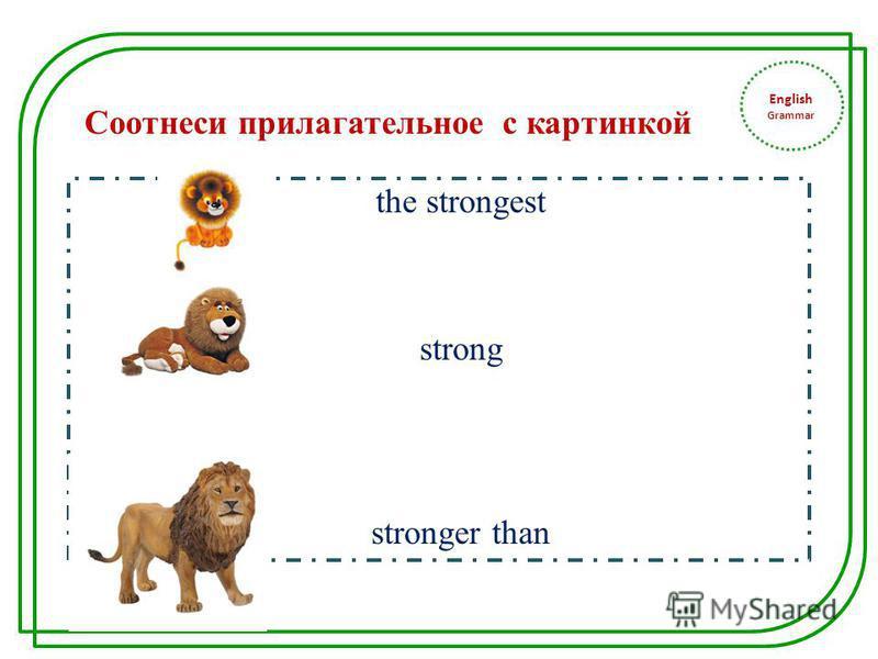 English Grammar the strongest strong stronger than Соотнеси прилагательное с картинкой