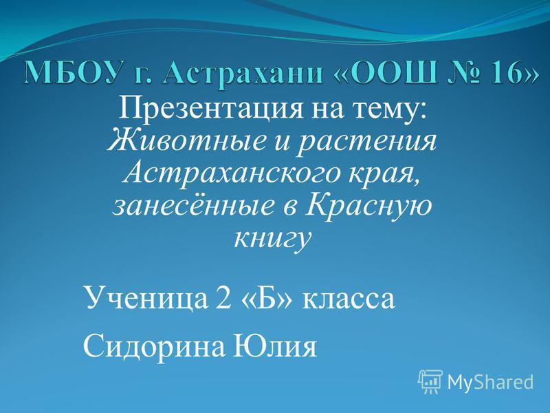 Презентация на тему: Животные и растения Астраханского края, занесённые в Красную книгу Ученица 2 «Б» класса Сидорина Юлия