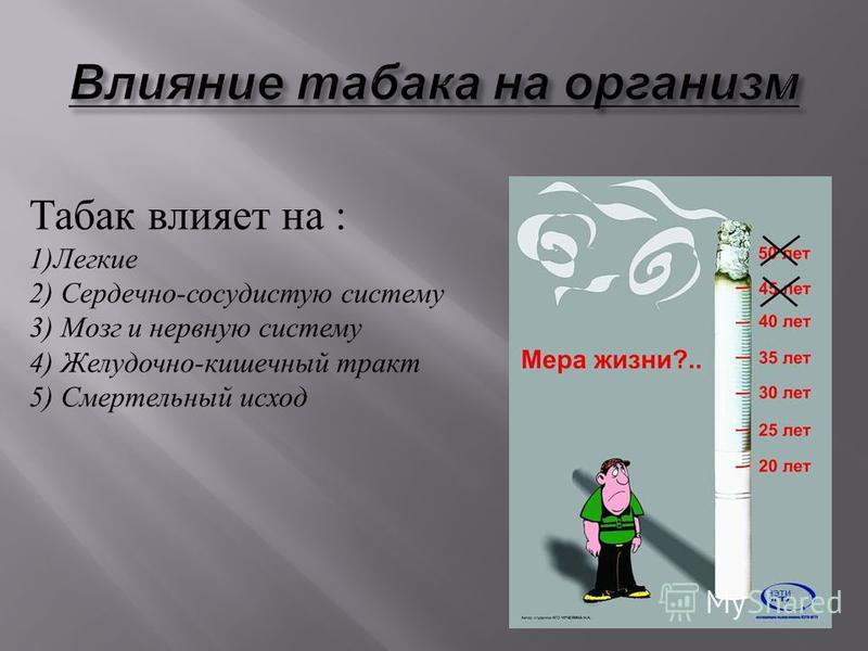 Табак влияет на : 1) Легкие 2) Сердечно - сосудистую систему 3) Мозг и нервную систему 4) Желудочно - кишечный тракт 5) Смертельный исход