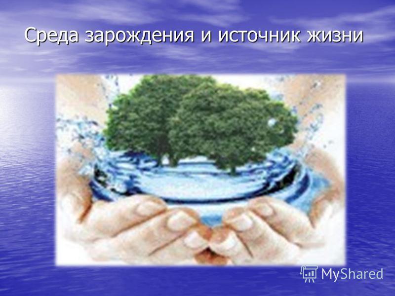 Среда зарождения и источник жизни Среда зарождения и источник жизни