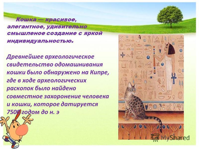 Кошка красивое, элегантное, удивительно смышленое создание с яркой индивидуальностью. Древнейшее археологическое свидетельство одомашнивания кошки было обнаружено на Кипре, где в ходе археологических раскопок было найдено совместное захоронение челов