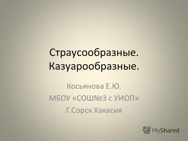 Страусообразные. Казуарообразные. Косьянова Е.Ю. МБОУ «СОШ3 с УИОП» Г.Сорск Хакасия