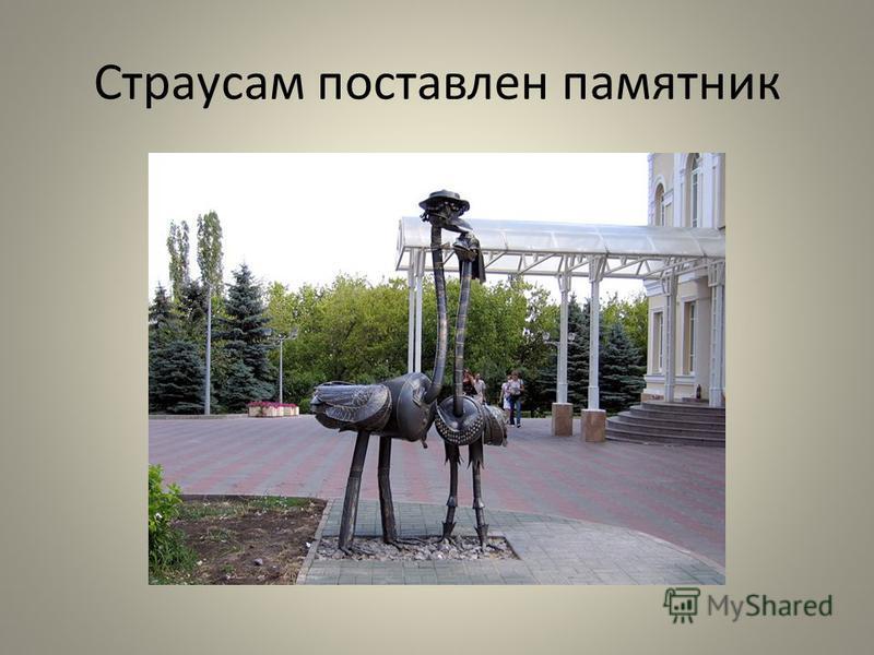 Страусам поставлен памятник