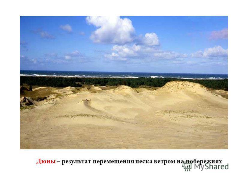 Дюны – результат перемещения песка ветром на побережьях