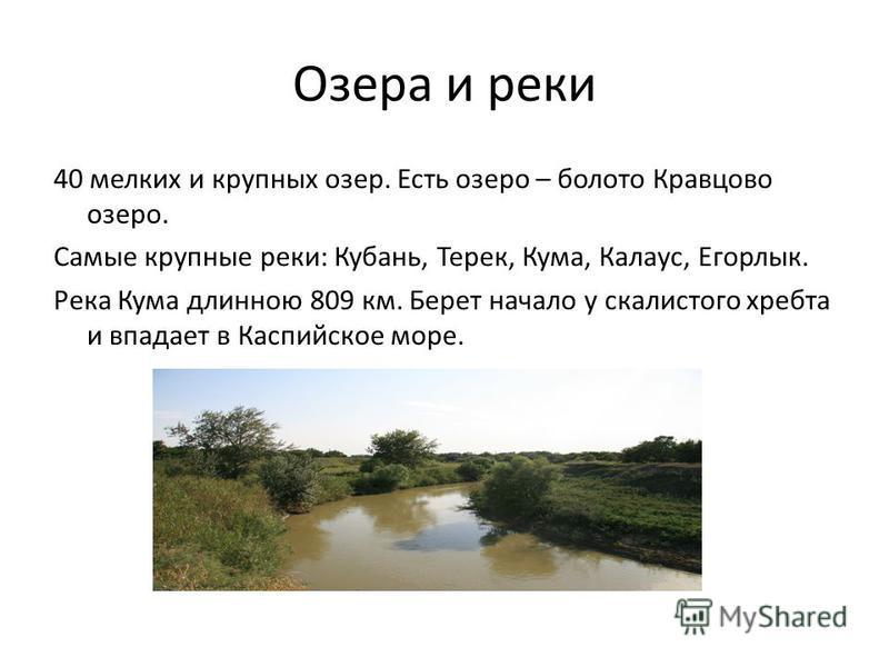 Озера и реки 40 мелких и крупных озер. Есть озеро – болото Кравцово озеро. Самые крупные реки: Кубань, Терек, Кума, Калаус, Егорлык. Река Кума длинною 809 км. Берет начало у скалистого хребта и впадает в Каспийское море.