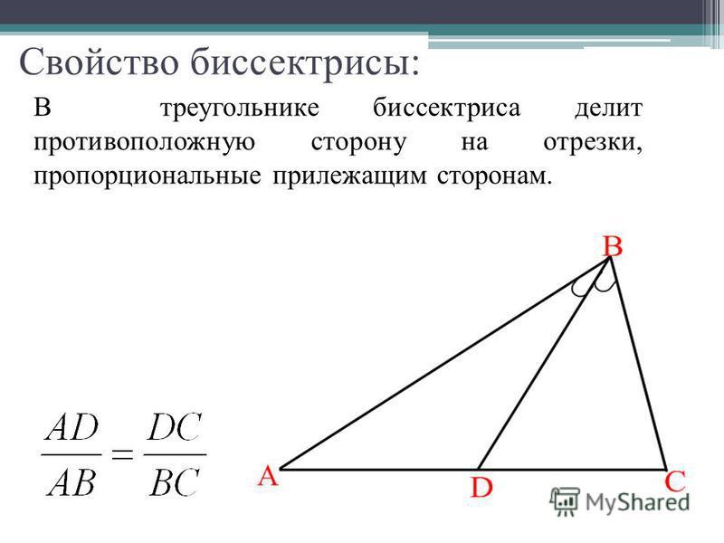 Свойство биссектрисы: В треугольнике биссектриса делит противоположную сторону на отрезки, пропорциональные прилежащим сторонам.